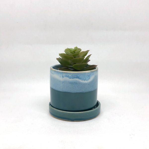 Chive_Small_Blue & Aqua