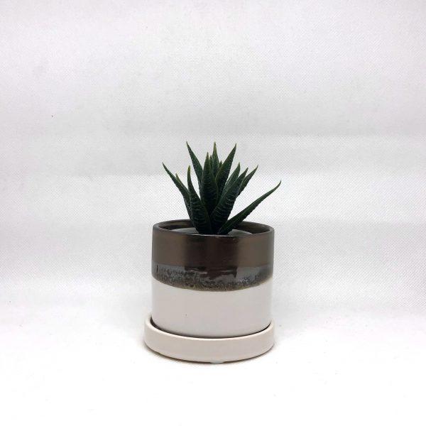 Chive_Small_Bronze&White