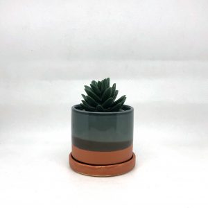 Chive_Small_Terracotta