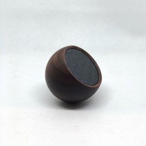 Gingko_speaker_walnut